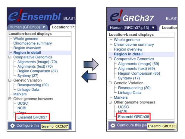 The GRCh37 assembly in Ensembl